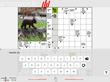 "Skeelo.net GmbH's New iPad Magazine ""Crossword for You Issue 01..."