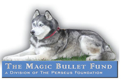 Julian Omidi and Michael Omidi help to fund canine cancer treatment