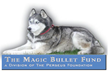 Animal Support Helps Fight Canine Cancer With Its New Partner Magic...