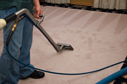 Atlanta carpet cleaning services from EMJ