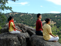 Yoga for Children Retreat