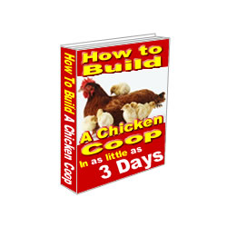 how to build a chicken coop in as little as 3 days review