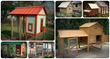 how to build a chicken coop in as little as 3 days