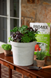PRO-MIX Organic Vegetable and Herb Mix