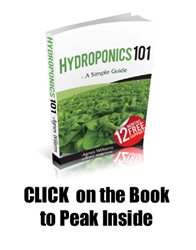 hydroponics 101 review