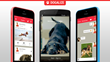 Dogalize: The Social Network to Bring Dog Owners Closer Together