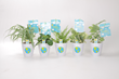 Look for Costa Farms' 'O2 for You' Plant Party houseplants in kid-friendly containers that come with Let's Have a Party sticker books.