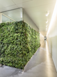 Hear the Green...! WSDG Provides Zurich´s Hirslanden Heart Clinic...