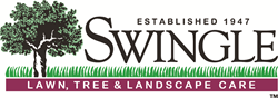 Swingle-Lawn-Care-Tree-Service-Denver