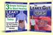 Leaky Gut Cure Program Review | Discover Karen Brimeyer's Methods for...