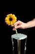 Flexible, self -sticking, reusable flower arranging cap