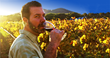 Luxury LGBT Wine Group, Out In The Vineyard, Takes Gay Wine Lovers To...