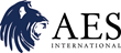 AES International Launches Corporate Solutions Team