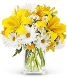 Taskba Flowers