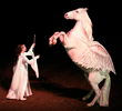 Blanco as Pegasus in a live theatrical performance with Cynthia Royal - Copyright Cynthia Royal