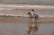 Blanco and Cynthia Royal riding bridleless on a California Beach - Copyright Cynthia Royal