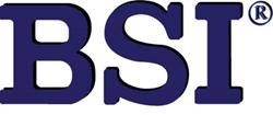 Business Software, Inc. (BSI)