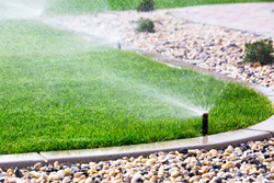 Senske Services, Lawn Care, Tree Care, National Lawn Care Month, watering tips, water conservation, aeration