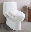 dual flush one piece eco-friendly ceramic toilet Eago TB222