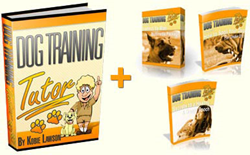 dog training tutor review