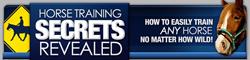 horse training secrets revealed review