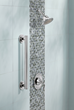 Moen Iso Grab Bar