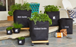 Patio To Table Gardening- Gardenuity Grow Bag growing systems