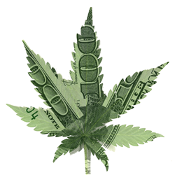 Cannabis Capital Summit - Angel Investing in Marijuana Business