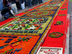 Guatemala Sawdust Carpets