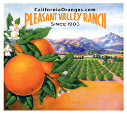 Valencia Oranges in California