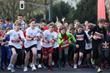 Scenes from METRO GROUP Marathon Düsseldorf @ METRO GROUP Marathon Düsseldorf/Norbert Wilhelmi