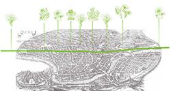 Corsophilia: Uncovering the Biodiversity of the Roman Streetscape