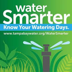 Tampa Bay Water's Water Smarter Campaign