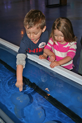 """Jiggle A Jelly"" Maritime Aquarium exhibit"