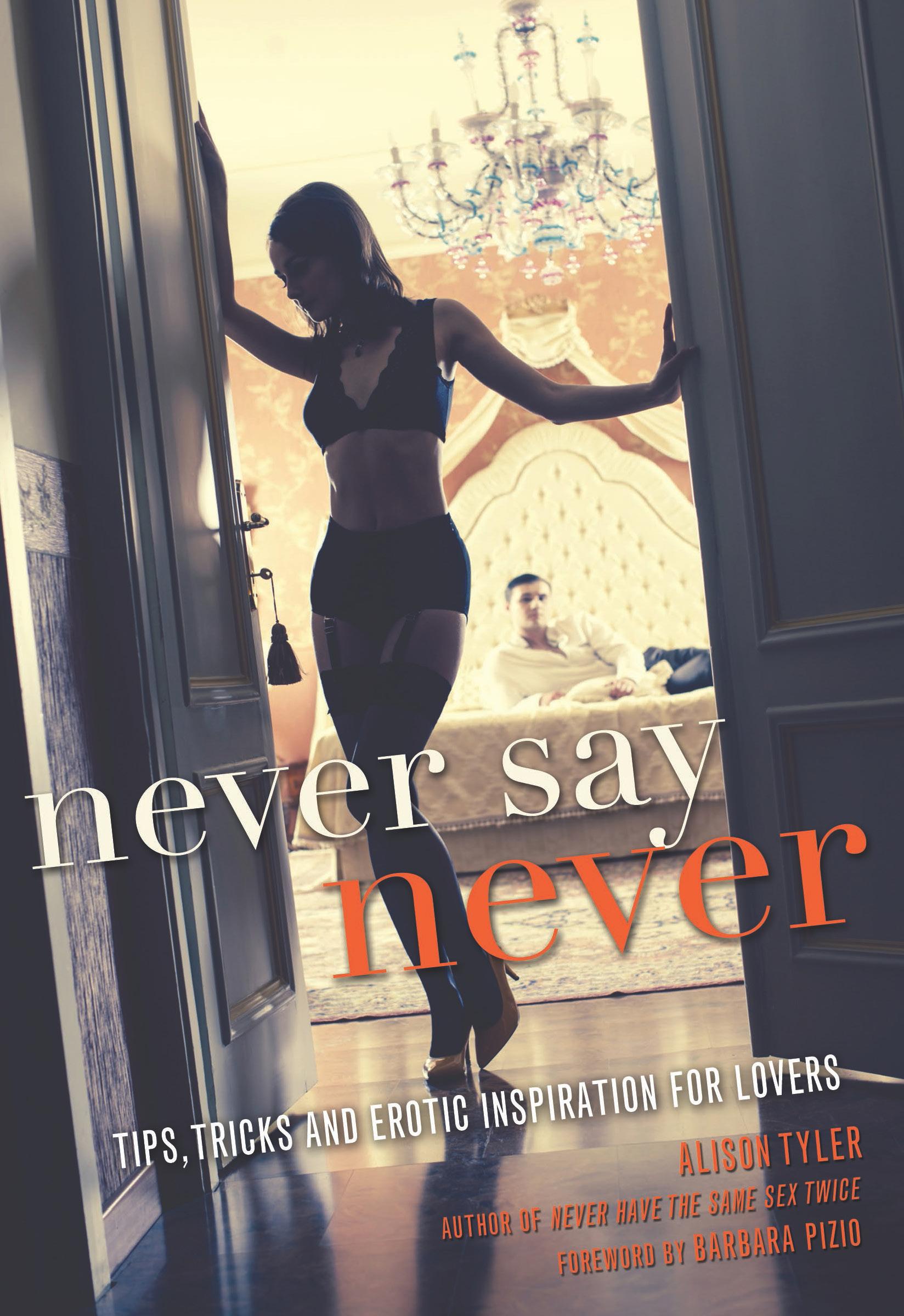 DIY Pleasure: Alison Tyler, Author of Never Say Never