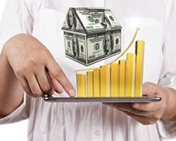 Wise Investments in Twin Cities Real Estate