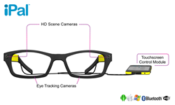 iPal Smartglasses in Sporting Yellow Frames