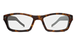 iPal Smartglasses