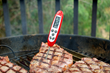 Instant Read Thermometer for perfect steaks