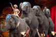 Ringling Bros. Circus Tix Roar on BuyAnySeat.com