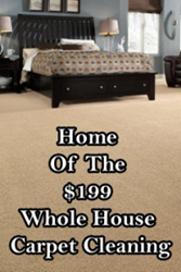 Charlotte Carpet Cleaning, Dry Organic Carpet Cleaning, Journey's Carpet Cleaning