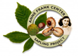 Anne Frank Center - Sapling Project