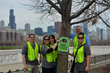 Look Up and Learn; Colorful Tags Adorn Thousands of Chicago Trees This...