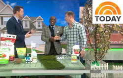 ForeverLawn on the TODAY Show