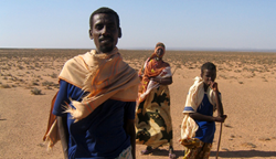 PCI is providing satellite technology to aid pastoralists in Ethiopia.
