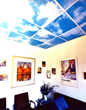 Outwater's Acrylic Ceiling Panels