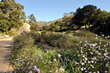 """Get Inspired!"" Santa Barbara Celebrates Public Gardens in..."