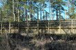 Timber Vehicular Bridge