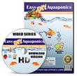 Easy DIY Aquaponics Review | Can Easy DIY Aquaponics Help People Grow Organic Produce at Home – hynguyenblog.com