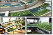 Easy DIY Aquaponics Review | Can Easy DIY Aquaponics Help People Grow Organic Produce At Home?